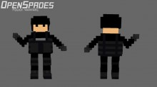 Law Enforcement Skin preview