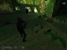 Jungle Mission: Mystery behind the trees preview